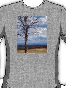 Vermont in the Distance T-Shirt