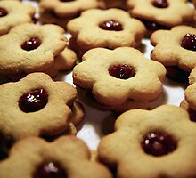 More Cookies ! by Kasia Fiszer