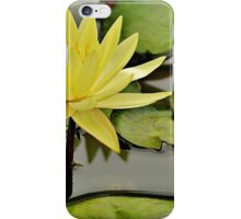 Across the magic ponds of Piedmont iPhone Case/Skin