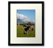 photoj Tas, 'Country Mt Roland' Framed Print
