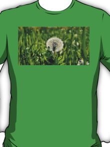 The seeds of a hundred generations T-Shirt