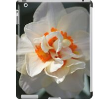 Blooming Double Daffodil  iPad Case/Skin