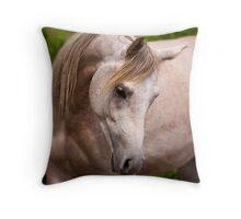 Amahuckleberry Throw Pillow