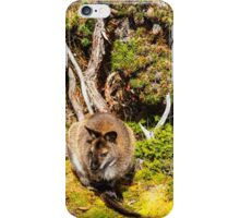 Bennetts Wallaby iPhone Case/Skin
