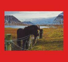 horse farm, Grundarfjordur, Snaefellsnes, Iceland Kids Clothes