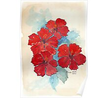 Red & Blue Hibiscus Poster