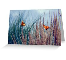 Fluttering on by Greeting Card