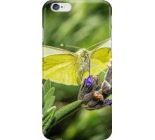 Cabbage White Butterfly iPhone Case/Skin