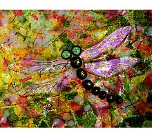 Stained Glass Dragonfly... Photographic Print