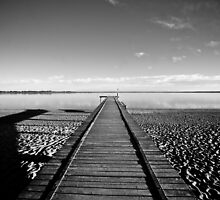 Lake Bonney Jetty by Jamie  Druitt