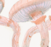 Fantastic Mushrooms Sticker