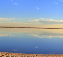 Lake Bonney Panoramic by Jamie  Druitt