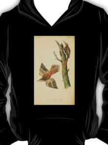 James Audubon Vector Rebuild - The Birds of America - From Drawings Made in the United States and Their Territories V 1-7 1840 - Brown Tree Creeper T-Shirt