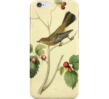 James Audubon Vector Rebuild - The Birds of America - From Drawings Made in the United States and Their Territories V 1-7 1840 - Townsend's Ptiliogony iPhone Case/Skin