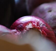 Red onions by lucindadodds