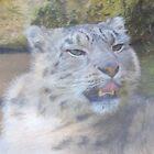 Snow Leopard Portrait (Photo Cezanne Style) by CreativeEm
