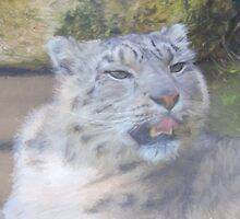 Snow Leopard Portrait (Photo Cezanne Style) by CreativeEm