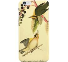 James Audubon Vector Rebuild - The Birds of America - From Drawings Made in the United States and Their Territories V 1-7 1840 - Worm Eating Swamp Warbler iPhone Case/Skin