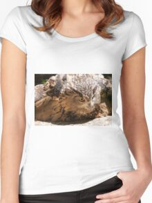 owl in the mountains Women's Fitted Scoop T-Shirt