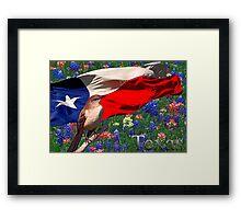 Texas Framed Print