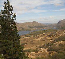 Killarney lakes 7 by John Quinn