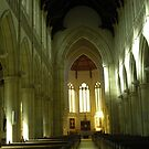 Inside The Cathederal by judygal