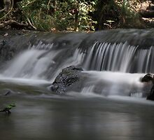 FNQ Streams and Falls by Di Edwards