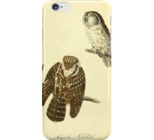James Audubon Vector Rebuild - The Birds of America - From Drawings Made in the United States and Their Territories V 1-7 1840 - Tengmalm's Night Owl iPhone Case/Skin
