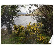 Killarney lakes 11 Poster