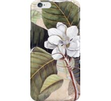 Antique Magnolia Collage iPhone Case/Skin