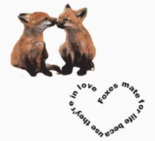 foxes mate for life because they're in love by Tinms