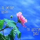 Dear Mum by Elaine Teague