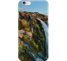 The Loup Of Fntry iPhone Case/Skin