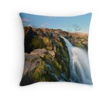 The Loup Of Fntry Throw Pillow