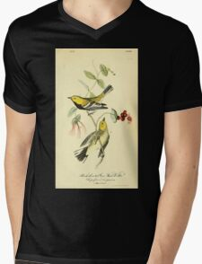 James Audubon Vector Rebuild - The Birds of America - From Drawings Made in the United States and Their Territories V 1-7 1840 - Black Throated Green Wood warbler Mens V-Neck T-Shirt