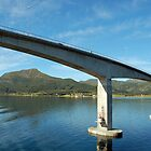Stokmarknes - Lofoten - Norway by Arie Koene