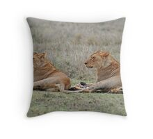 Lions of the Serengeti, Tanzania, Africa (Y) Throw Pillow