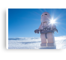 There isn't enough life on this ice cube to fill a space cruiser Canvas Print