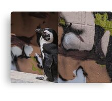 Penguin Art Canvas Print
