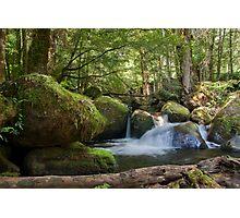 Falls Along The Beeches Trail - Near Marysville, Victoria, Australia Photographic Print
