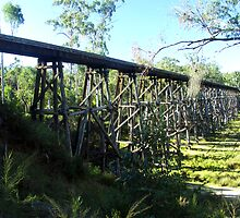 Stony Creek Railway Trestle Bridge, Nowa Nowa, East Gippsland, Victoria by Bev Pascoe