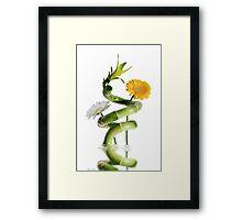Bamboo and gerberas daisies Framed Print