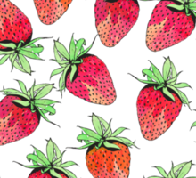 Bright Colorful Watercolor Fruity Strawberries Sticker