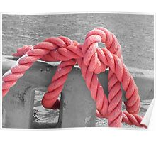 Pink Rope Poster