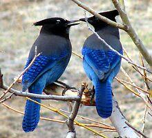 Blue by Jan Landers