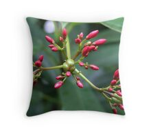 The Aliens Are Coming Throw Pillow