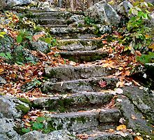 Steps of Stone by ctheworld