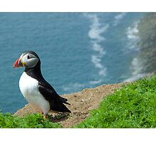 Puffin Above Surf Photographic Print
