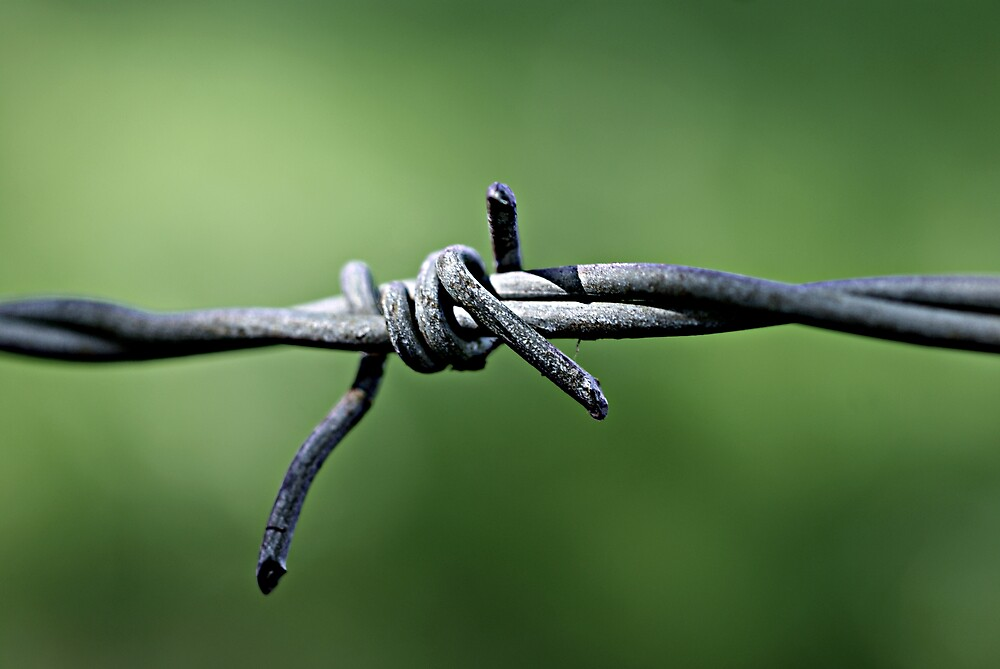 Barbed Wire by CharlieFulluck