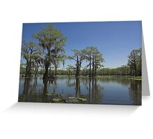 Caddo Lake, Texas Greeting Card